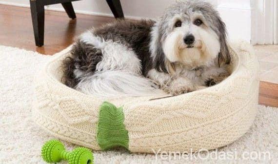 Eski kazaktan köpek yatağı