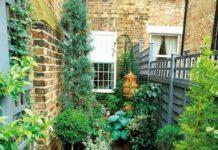 Bahçe Dar Tasarımı