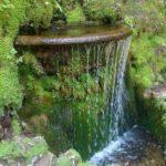 Bahçe Doğal Süs Havuzu