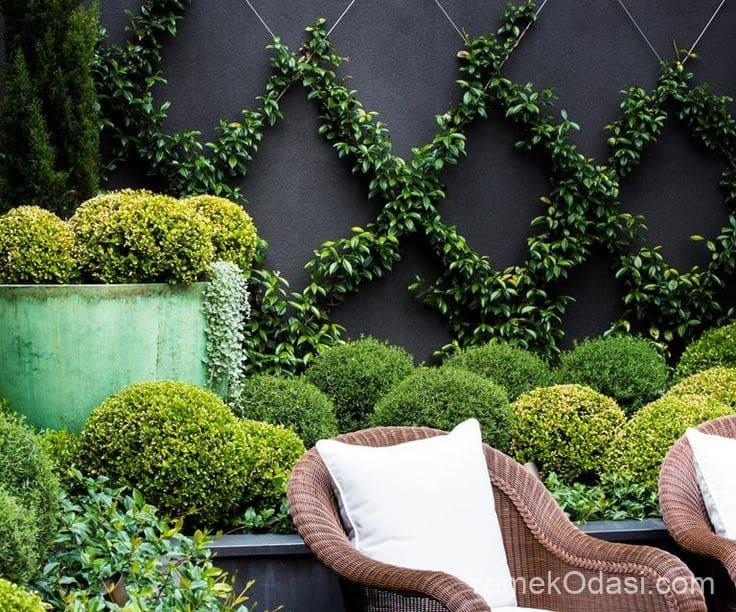 Bahçe Duvar Tasarımı