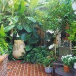 Bahçe Köşe Dar Tasarimi